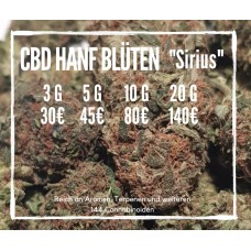 "CBD Blüten ""Sirius"" - Strawberry Kush Indoor CBD Hanf"